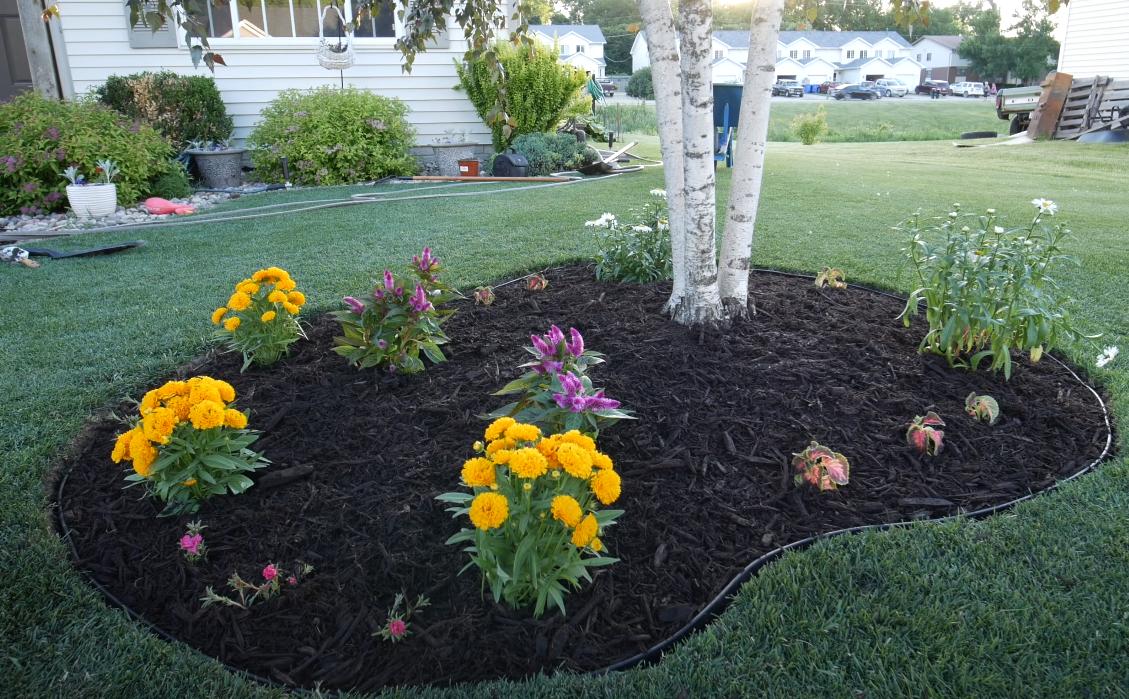 island garden with flowers
